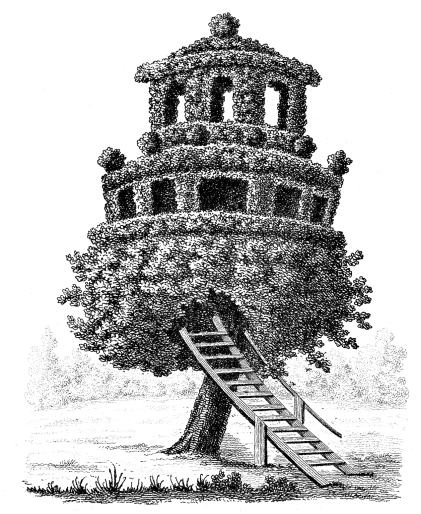 treehouse tree